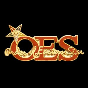 OES W/Star New Image Pin
