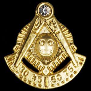 Mason Past Master Stone Lapel Pin