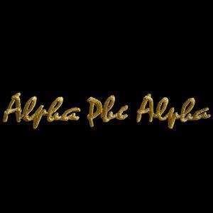 APA Gold Small Script Sets Emblem W/Heat Seal Backing