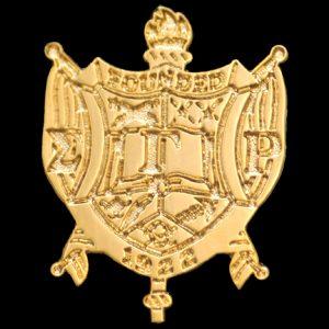 "SGR 1"" Sandblast Gold Shield Pin"