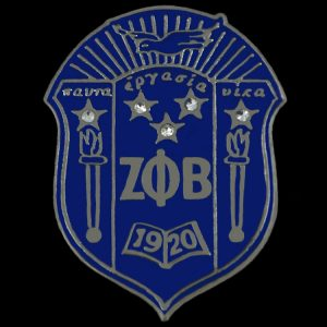 ZPB 1″Shield Pin With Stones