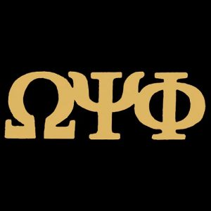 OPP 1″ Gold Letters Lapel Pin