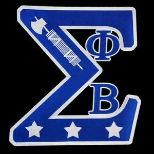 PBS 10 1/2″W Tackle Twill Swag Emblem W/Heat Seal Backing